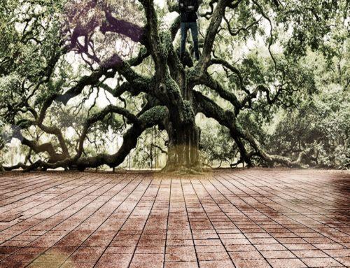 L'homme dans l'arbre